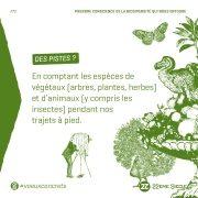 PRENDRE CONSCIENCE DE LA BIODIVERSITE QUI NOUS ENTOURE
